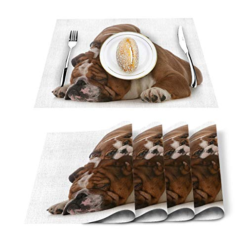 Hostline Placemats Heat-Resistant Placemats Stain Resistant Anti-Skid Washable Table Mats Woven Placemats,Cute French Bulldog Father and Son Set of 4