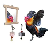 Vehomy Chicken Toys for Hens Birds Swing Hanging Mirror Toys with Bell and 2pcs Beak Grinding Molar Stones for Chicken Parrots