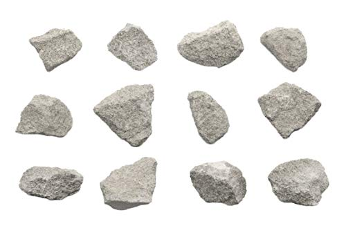 """12PK Oolitic Limestone, Sedimentary Rock Specimens – Approx. 1"""" – Geologist Selected & Hand Processed – Great for Science Classrooms – Class Pack – Eisco Labs"""