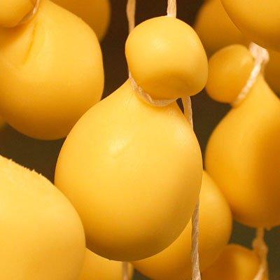 北海道【十勝ブランド認証品】ナチュラルチーズ5点セット 新鮮な牛乳で作った4種類のチーズとミルクジャム 4セット