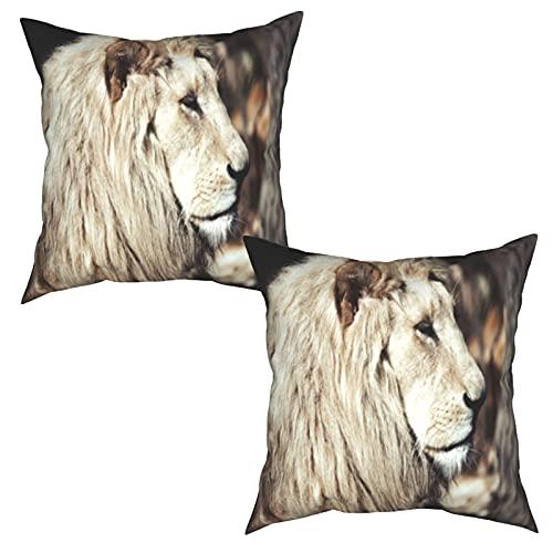 Pack de 2 Fundas de Almohada,Hermoso león Blanco Raro en la Vida Salvaje Rey de los Animales,Funda de Cojín Cuadrado de Protectora de Almohada para Sofá Cama Decoración del Hogar (45x45cm) x2