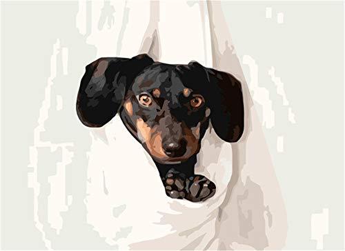 Rompecabezas Rompecabezas Para Adultos 1000 Piezas Adultos Adultos Niño Niña Rompecabezas Imposible Perro(75 * 50Cm)