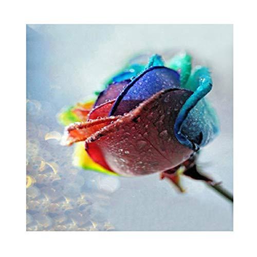 MXJSUA DIY 5D Kits de Pintura de Diamantes Taladro Completo Cristal Redondo Diamantes de imitación Imagen Artesanía para el hogar Decoración de Pared Regalo Azul y Rojo Rosa 30x30 cm