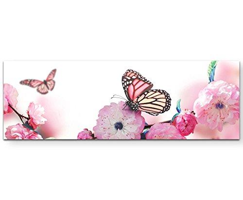 Paul Sinus Art Leinwandbilder | Bilder Leinwand 120x40cm Schmetterlinge auf Japanischen Kirschblüten