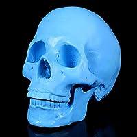 色の人間の頭蓋骨モデルハロウィーンは1を装飾:解剖学の授業バーパーティーホームデコレーションのための1のレプリカスカルスケルトン樹脂彫像,ブルー