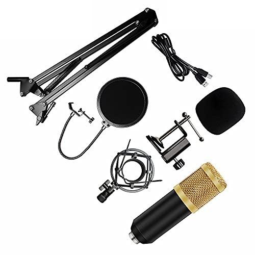 YZQ Conjuntos De Micrófonos USB, Kit De Micrófono Cardioides De Transmisión Cardioides Profesional De 192 Khz / 24 bits, para Skype, Zoom, Youtube, Juegos, Grabación, Podcast,I