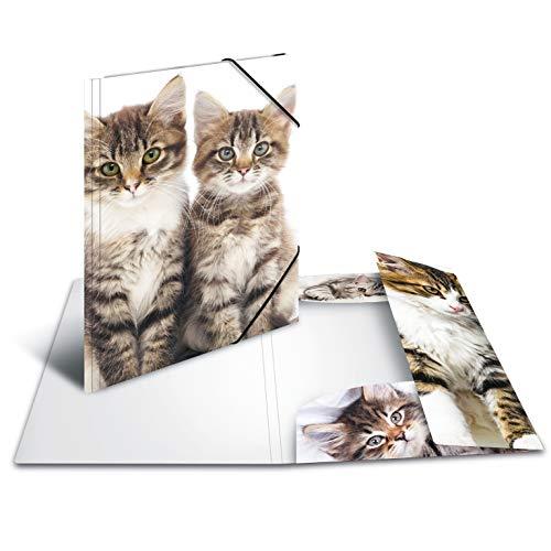 HERMA 7143 - Cartellina portadocumenti, formato DIN A3, motivo: gatti, in plastica resistente, con alette interne stampate, con elastico, raccoglitore ad angolo, 1 cartellina per bambini