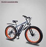 Bicicletas Eléctricas, Mens adultos bicicleta eléctrica de montaña, extraíble 36V batería de litio de 13Ah, Bicicletas 350W Playa Nieve, aleación de aluminio fuera del camino de la bicicleta, 26 pulga