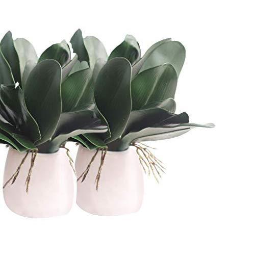 teng hong hui Hoja de la Planta de la Planta Verde 2pcs Artificial de orquídeas Phalaenopsis Hojas orquídea Artificial en Maceta Decorativa del Ministerio del Interior