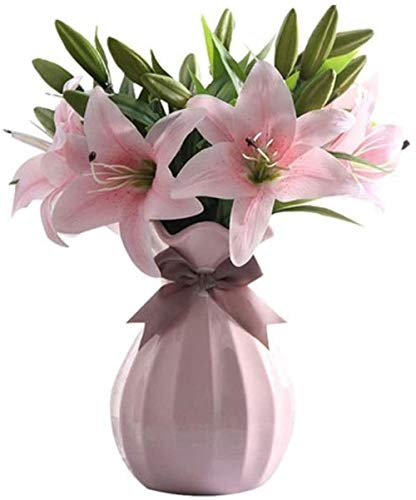 Vaas keramische vaas Handmade Crafts kan worden uitgerust met Water for planten Telen kan worden geplaatst In onderdeel tv kabinet, huishoudens, kantoren, bruiloft, feest (roze) (Kleur: geen gedroogde