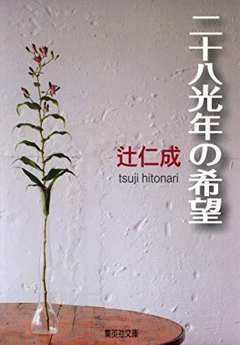 28光年の希望 (集英社文庫)