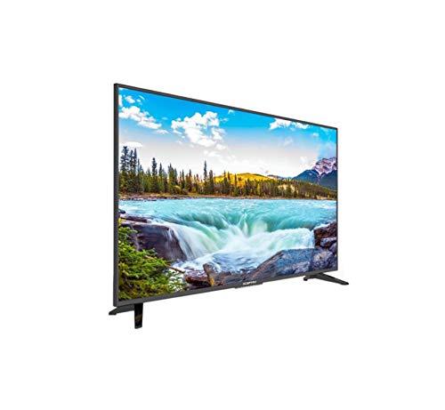 Sceptre 50 Zoll Class FHD (1080P) LED-TV (X505BV-FSR)