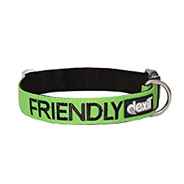 FRIENDLY (Known as Friendly) Green Colour Coded Neoprene Padded Dog Collar PREVENTS Accidents By Warning Others Of Your Dog In Advance