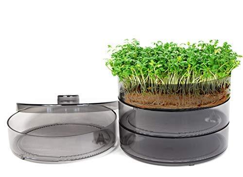 mgc24® Keimbar - Keimsprossenbox zur Anzucht von Keimsprossen mit 4 Keimschalen und Deckel