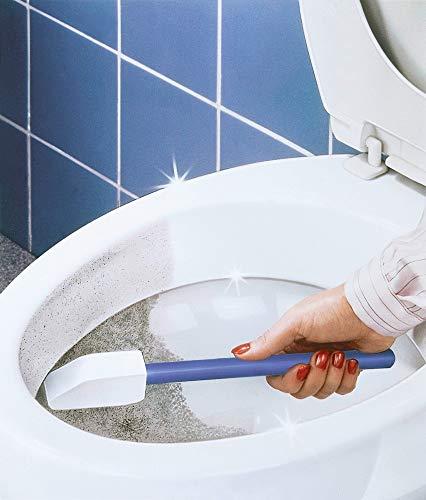 Bimsstein-Toilettenreiniger