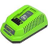 Greenworks Tools 2904607 Cargador rápido de baterías G40C (Li-Ion 40 V 4A 60 min tiempo carga con batería de 2Ah apto para todos los dispositivos y baterías de la serie de 40 V de Greenworks Tools)