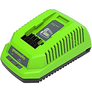 Greenworks Tools chargeur rapide de batterie Greenworks Tools G40C (Li-Ion 40 V 4A 60 min temps de charge batterie 2Ah pour tous les appareils et batteries de la série 40 V Greenworks Tools) (B01NAPG4N3) | Amazon price tracker / tracking, Amazon price history charts, Amazon price watches, Amazon price drop alerts