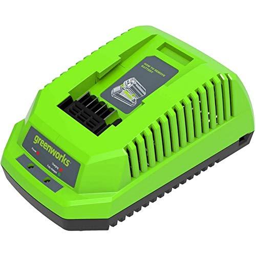 Greenworks Tools Cargador rápido de baterías G40C (Li-Ion 40V 2.2A 60 min tiempo...