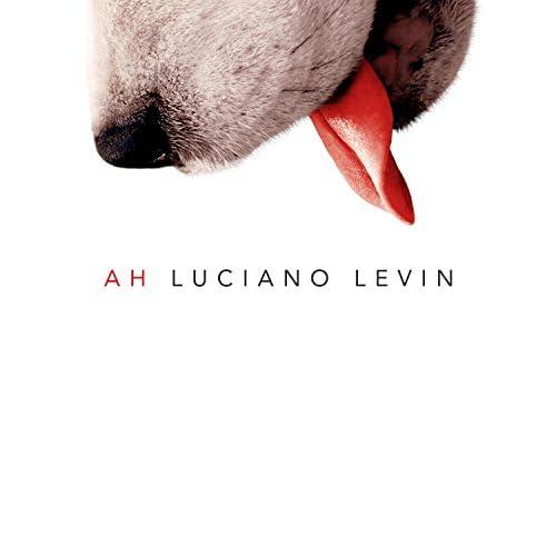 Luciano Levin
