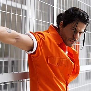 Shahrukh Khan Hits SRK