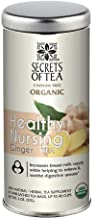 Lactation Tea - Healthy Nursing Tea to Boost Breast Milk Supply - USDA Organic - 20 Sachets (Ginger Flavor)