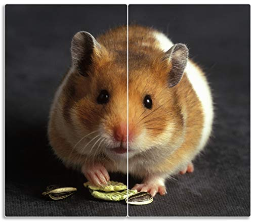 Herdabdeckplatte / Spritzschutz aus Glas, 2-teilig, 60x52cm, für Ceran- und Induktionsherde, Putziger Hamster mit Nüssen zwischen den Pfoten