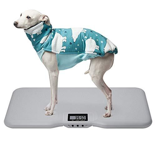 Báscula de alta precisión X-grande para perros grandes con superficie texturizada, capacidad de 150 kg (±50 g), gran pantalla