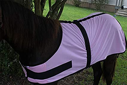 CHALLENGER Miniature Weanling Donkey Pony Horse Foal Fly Summer Sheet Neck 51817
