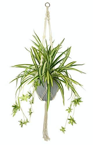 Flair Flower Zimmerpflanze Künstliche Wasserlilie Chlorophytum Comosum Grünpflanzen Spinne Pflanze Kunstblume Blume Kunstpflanze Seidenblume Textilblume Deko Balkon, grün/weiß, 95x45x45 cm