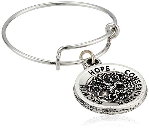 Alex and Ani Core Trend Ring Silver One Size