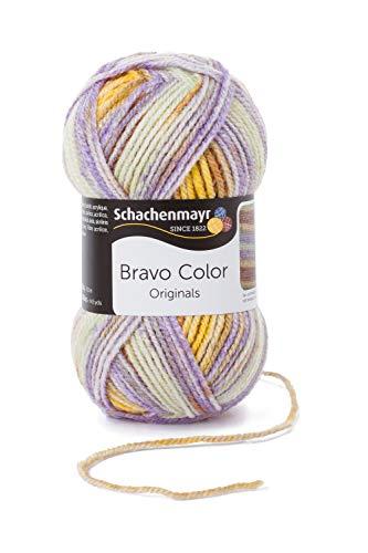 Schachenmayr Bravo Color 9801421-02121 provene Handstrickgarn, Häkelgarn