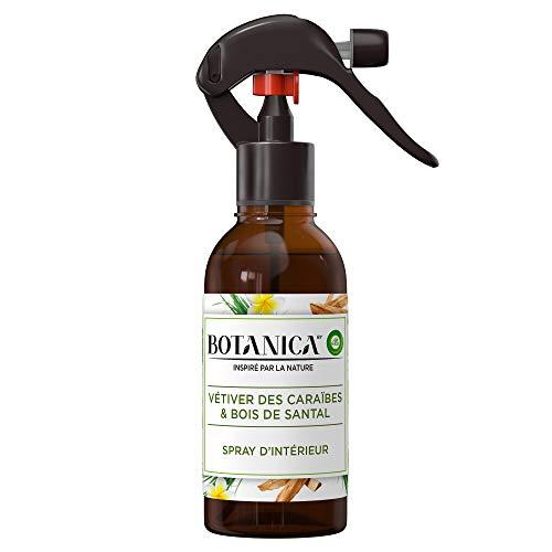 Air Wick Botanica Désodorisant Maison Spray d'Intérieur Vétiver/Bois de Santal 236 ml
