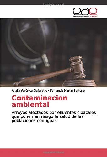 Contaminacion ambiental: Arroyos afectados por efluentes cloacales que ponen en riesgo la salud de las poblaciones contiguas