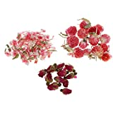 約8g 押し花 ローズ グローブアマランス 自然乾燥花 アンバー作り ホビー用素材 電話ケースの装飾