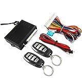 RHNE Dispositivo antirrobo de Piezas electrónicas para automóvil Cerradura Central Dart Hawk Alarm M616-8152 Negro