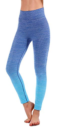 RUNNING GIRL Ombre Yoga Leggings Compatible for Nike Seamless Power Stretch High Waisted Yoga Pants for Women(2015,Blue,S/M)