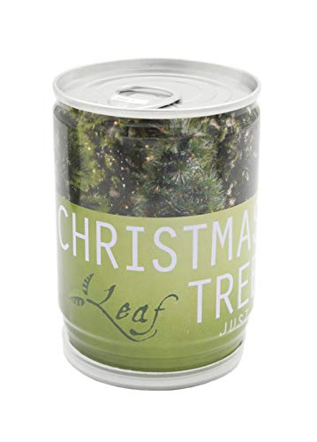 Fai crescere il tuo albero di Natale
