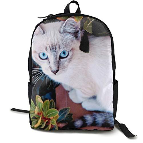 Unisex-Rucksack mit Katzenmotiv in klassischer Farbe, für Fensterbank, für Reisen, Camping, Outdoor, Laptop, Tagesrucksack