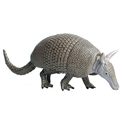 Flormoon Realistic Animal Figures Armadillo Figurines, Science Project, Cake Topper, Early Educational Toys Birthday for Toddlers Kids Age 3 4 5