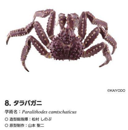 北海道ランド フィギュアストラップ 8 タラバガニ 単品 海洋堂 北海道 限定 グッズ フィギュア カニ 8