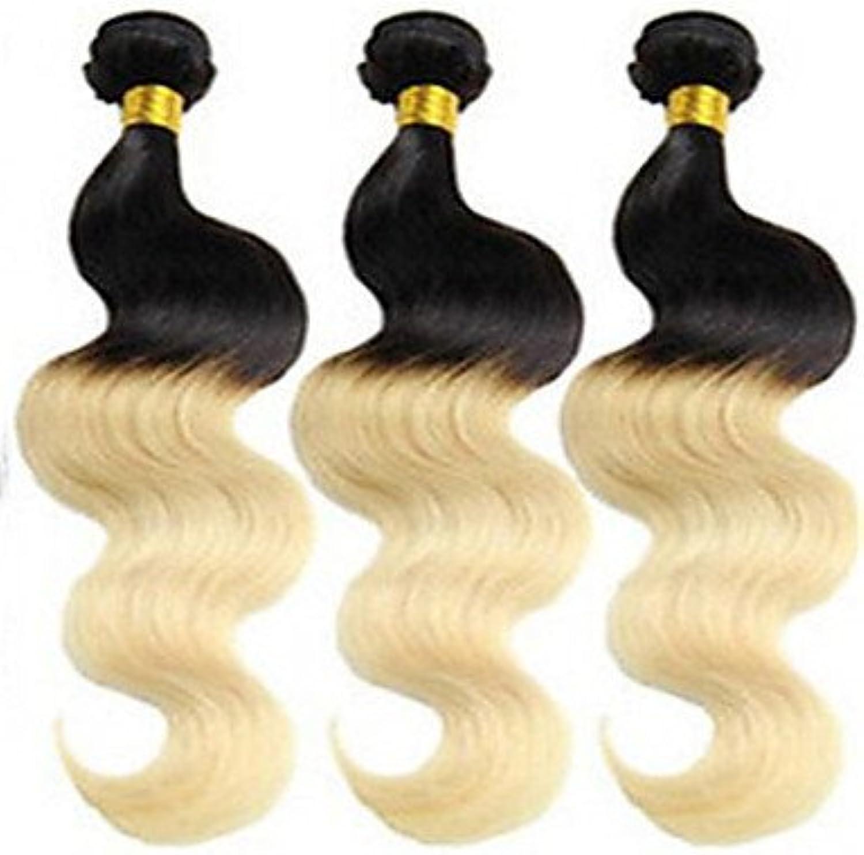 YAMEIJIA 3Pcs Lot Brazilian Virgin Hair Body Wave Ombre Hair Extensions Two Tone color 1B 613 Honey Blonde Ombre Hair Bundles