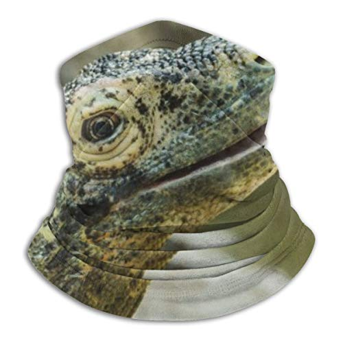Happy Komodo Dragon Balaclava Turban, Multi-Purpose Mask, Mask, Skiing, Fishing, Hunting, Camping, Cycling Black