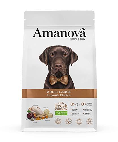 Amanova Cibo Secco Super Premium per Cani Adulti Taglia Grande Gusto Pollo - 100% Naturale, ipoallergenico e monoproteico - Low Grain - Cruelty Free - Formato da 12 kg