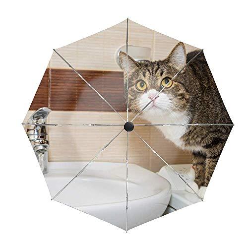 Golf Windproof Umbrella Compact Auto Open Schließen Katze im Waschbecken Robuster UV-Schutz
