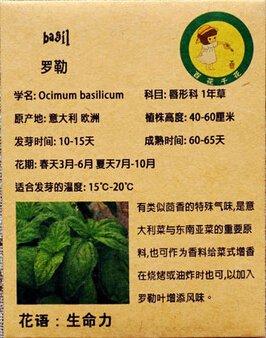 1 Original Paquet 50 Graines de basilic, Balcon en pot semences de légumes