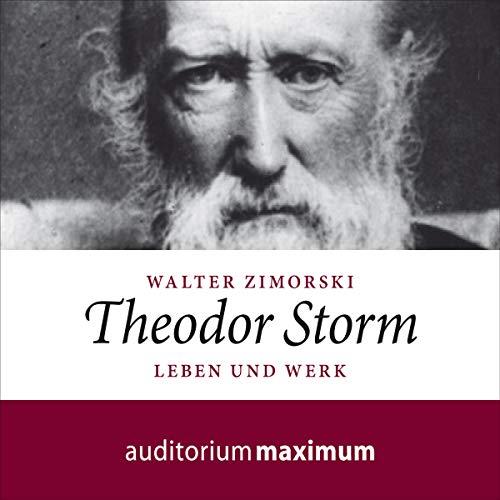 Theodor Storm - Leben und Werk cover art