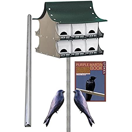 Amazon Com Bestnest S K 12 Room Purple Martin House Package Garden Outdoor