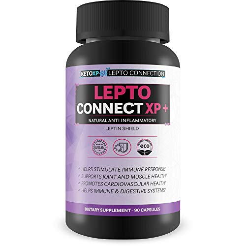 Lepto Connect XP Plus - Our Best Leptin Resistance Supplements for Weight Loss - Over 2000 MG Per Serving - Help Block Leptins, Release Fat Stores & Boost Fat Burn - Triple Action Diet Blend