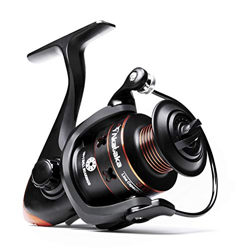 Best Microspinning Reel for Beginners