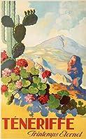 風景スペインテネリフェ島風光明媚な旅行ツアーイスラスカナリア諸島ヴィンテージ装飾ポスター壁キャンバス家の装飾壁アート50x70cmフレームなし